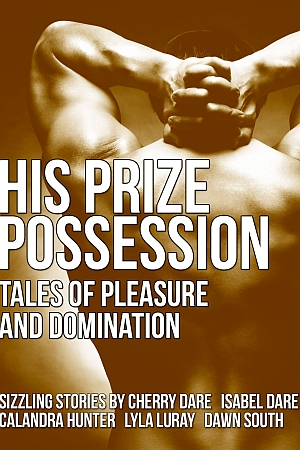 His Prize Possession cover